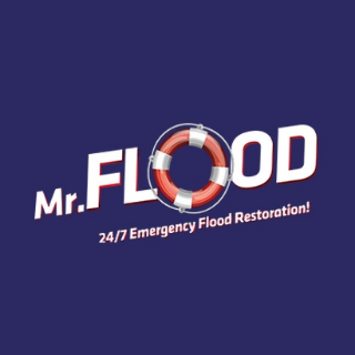 Mr Flood