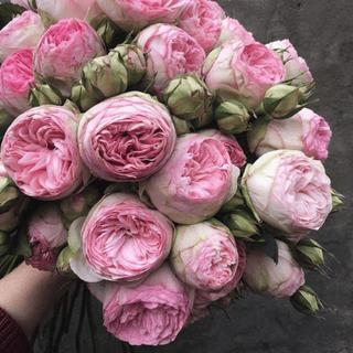 Служба доставки свежесрезанных цветов