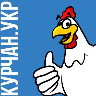 Курчан
